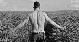 testostérone attraction attirance